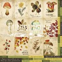 """Лист односторонней бумаги 30*30 см из коллекции """"Botany autumn"""" от Фабрики Декора"""