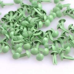 Брадс зелёный, шляпка - 5 мм